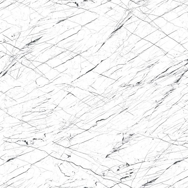 NE72 – Black Stripes On White Marble